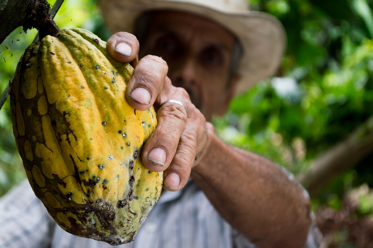 Exportar desde Nicaragua