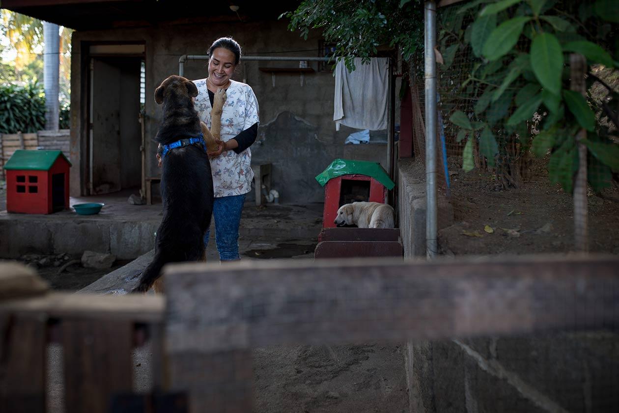 Bosco es el último perro que fue rescatada de las calles. Él es un pastor alemán mezclado con criollo que se encontró en estado de desnutrición. Carlos Herrera / Niú