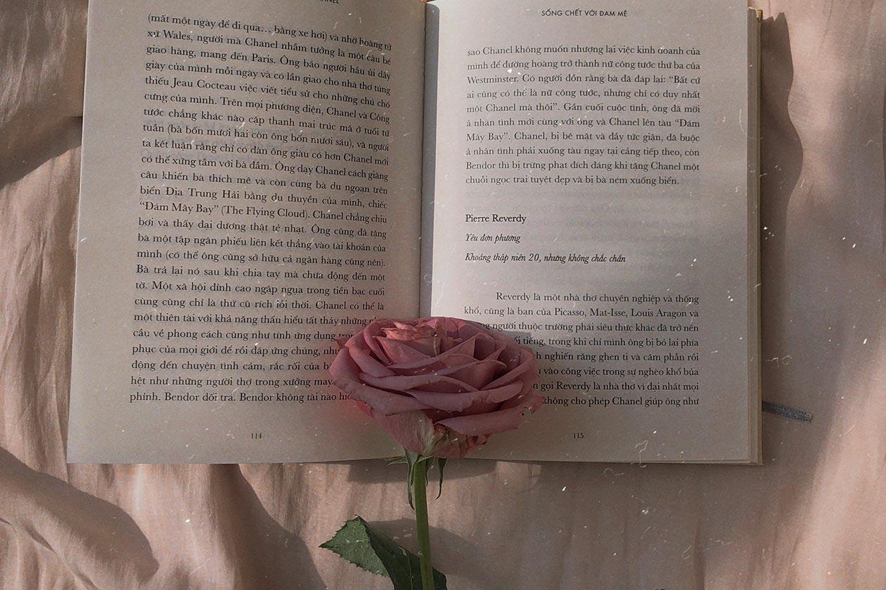 libros eróticos