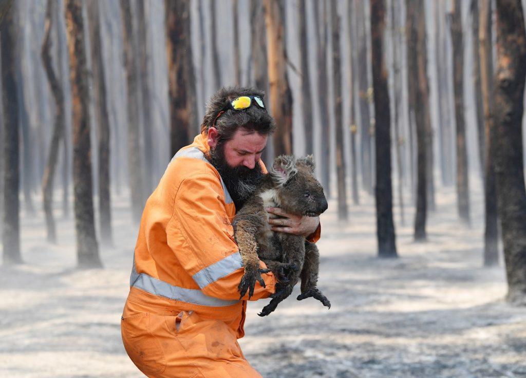 icendios en australia